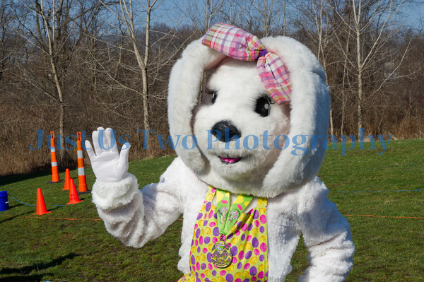 Funny Bunny